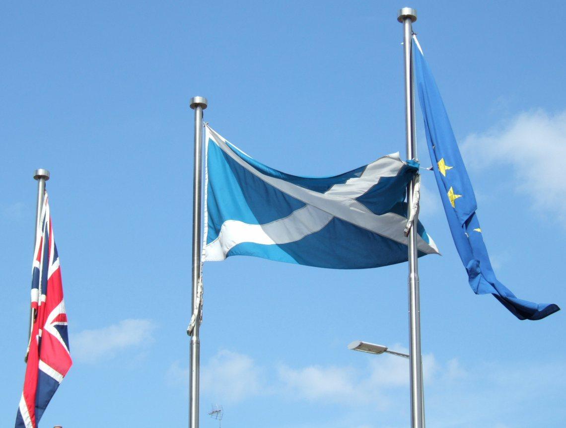 Flags_outside_Parliament.jpg
